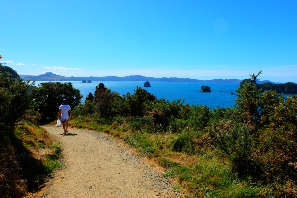 Walk to Coromandel Cove